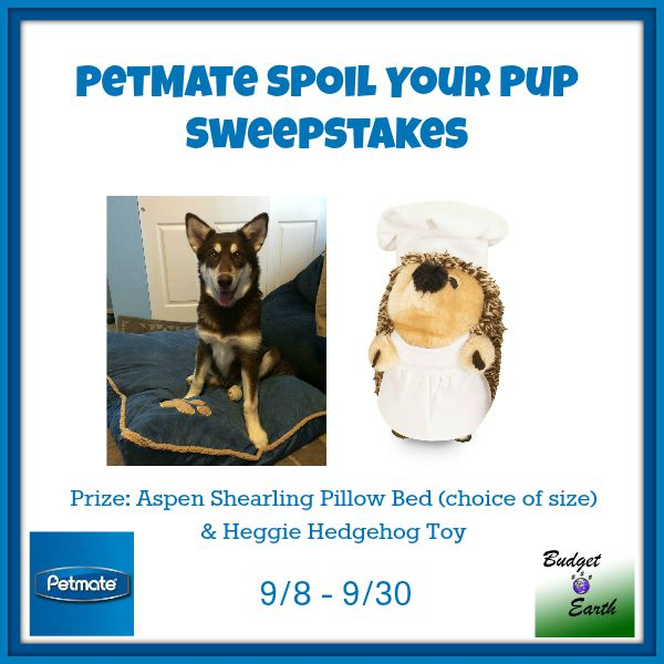PetMate Spoil Your Pup Sweepstakes