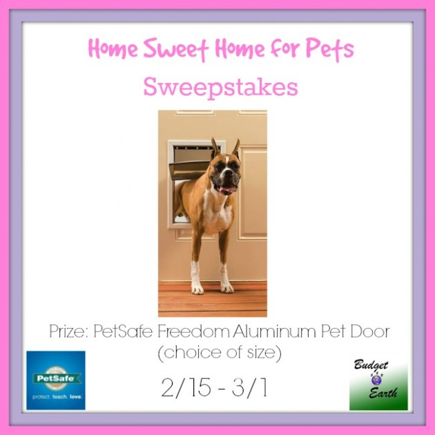 Home-Sweet-Home-for-PEts